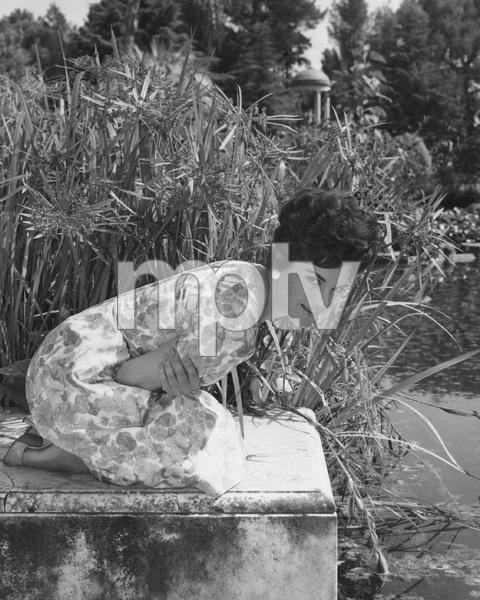 Connie Francis, FOLLOW THE BOYS, MGM, I.V. - Image 22339_0001