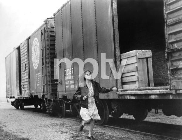 """Boxcar Bertha"" Barbara Hershey1972 AIP** I.V. - Image 22341_0003"