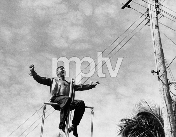 """The Rose Tattoo""Scene in which Burt Lancaster is on top of the mast of the boat parked in the lot opposite Magnani"