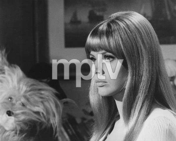 "Britt Ekland""The Bobo""Warner Brothers 1967**J.S. - Image 2325_0007"