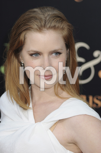 """""""Julie & Julia"""" Premiere  Amy Adams7-27-2009 / Mann Village Theater / Westwood, CA / Sony Pictures / Photo by Heather Holt - Image 23754_0204"""