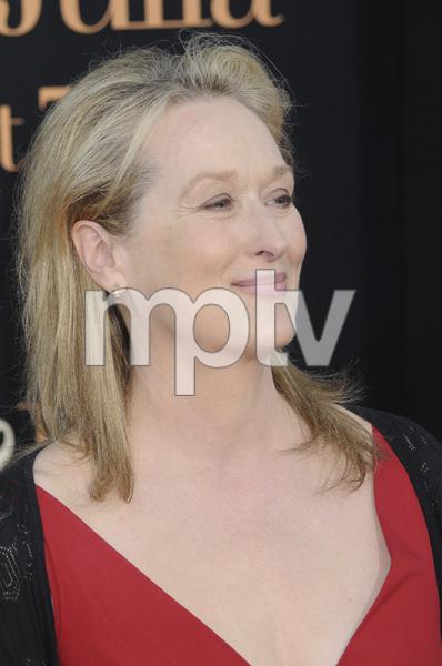 """Julie & Julia"" PremiereMeryl Streep7-27-2009 / Mann Village Theater / Westwood, CA / Sony Pictures / Photo by Heather Holt - Image 23754_0218"