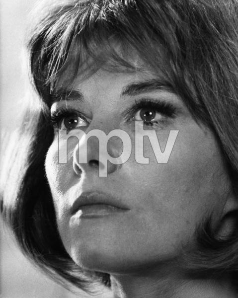 Lee Grantcirca 1967 - Image 2410_0013