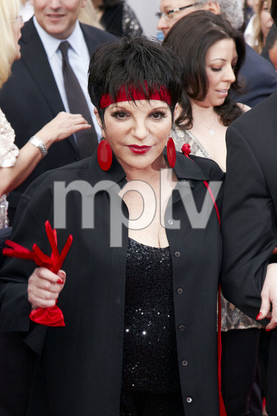 """40th Anniversary Restoration of Cabaret"" Premiere Liza Minnelli4-12-2012 / Grauman Chinese Theater / TCM Film Festival / Hollywood CA / Photo by Kevin Kozicki - Image 24206_0085"