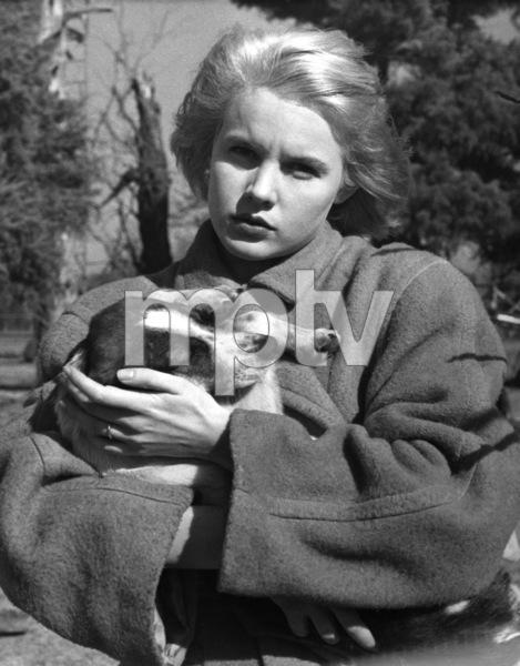 """Baby Doll"" Carroll Baker1956 Warner Brothers ** I.V. - Image 24287_0011"
