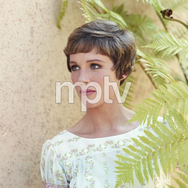 Julie Andrews circa 1966** B.D.M. - Image 24293_0068