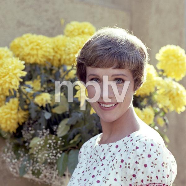 Julie Andrews circa 1966** B.D.M. - Image 24293_0069