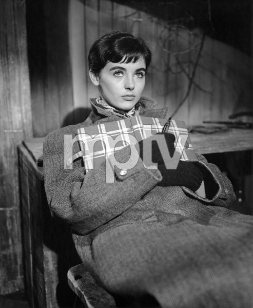 """""""The Diary of Anne Frank""""Millie Perkins1959 20th Century-Fox** B.D.M. - Image 24293_0929"""