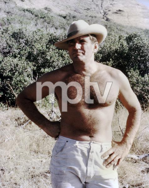 Rod Taylorcirca 1965** B.D.M. - Image 24293_1142