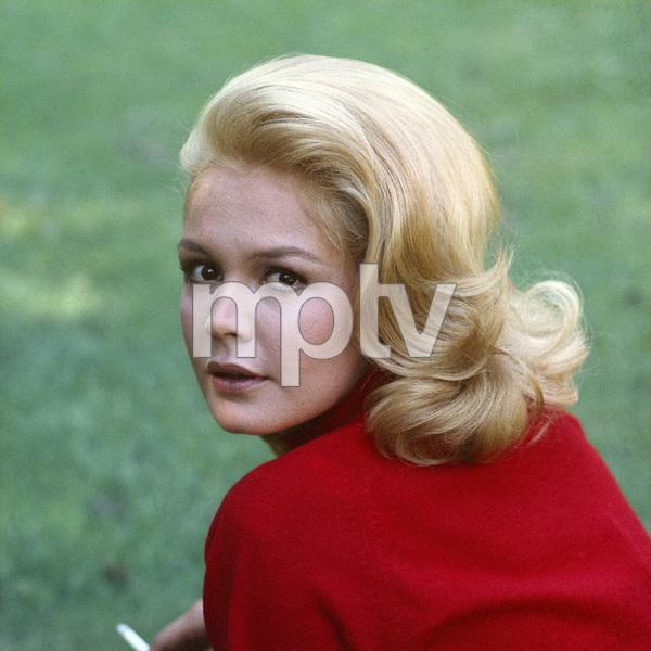 Sandra Deecirca 1965** B.D.M. - Image 24293_1511