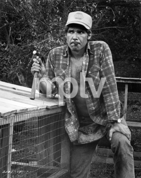 """Harrison Ford in """"Heroes""""1977 Universal** B.D.M. - Image 24293_2138"""