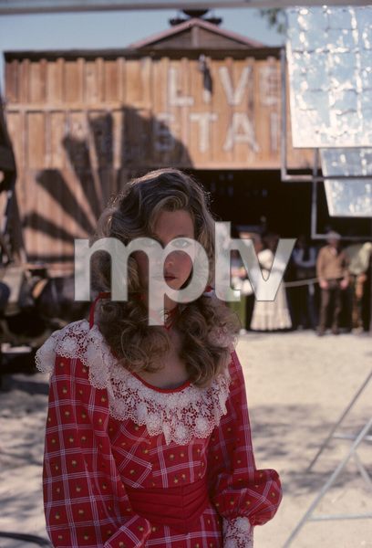 Lindsay Wagner1977© 1978 Gary Lewis - Image 24300_0106
