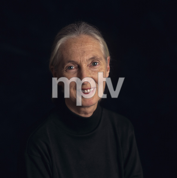 Jane Goodall1995© 1995 Dana Gluckstein - Image 24349_0071