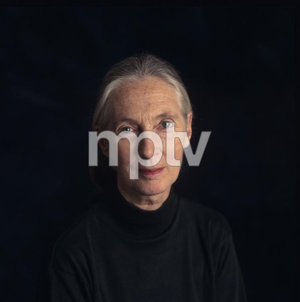 Jane Goodall1995© 1995 Dana Gluckstein - Image 24349_0074