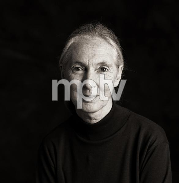 Jane Goodall1995© 1995 Dana Gluckstein - Image 24349_0075
