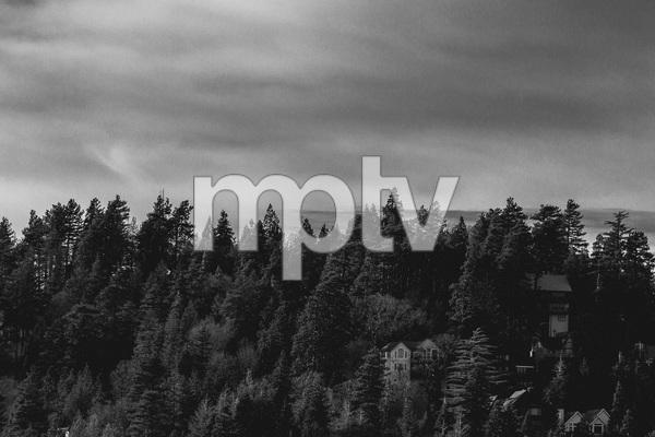 Big Bear, California2016© 2016 Jason Mageau - Image 24361_0053