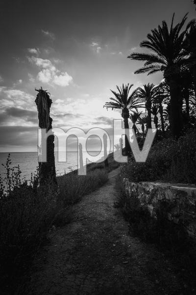 San Pedro, California coast2017© 2017 Jason Mageau - Image 24361_0279