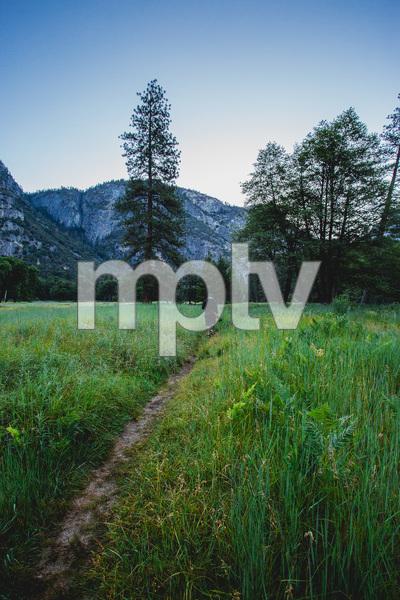 Yosemite National Park, California2016© 2016 Jason Mageau - Image 24361_0331