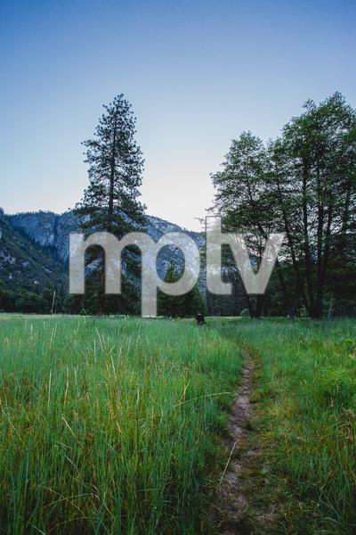 Yosemite National Park, California2016© 2016 Jason Mageau - Image 24361_0332