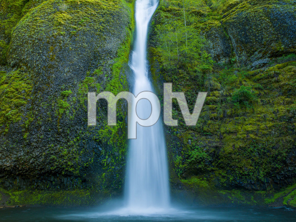 Multnomah Falls, Oregon2017© 2017 Viktor Hancock - Image 24366_0077