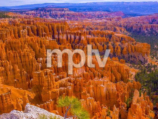 Bryce National Park, Utah2013© 2017 Viktor Hancock - Image 24366_0109