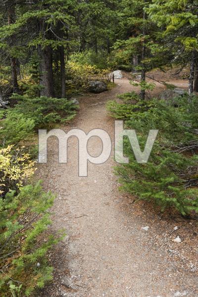 Moraine Lake, Banff National Park, Alberta, Canada2017© 2017 Deede Denton - Image 24368_0372