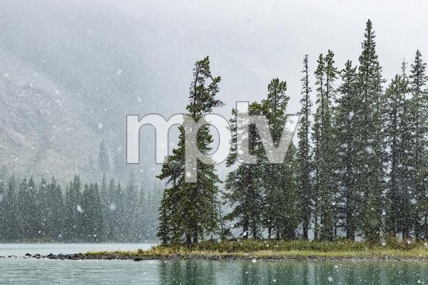 Maligne Lake, Jasper National Park, Alberta, Canada2017© 2017 Deede Denton - Image 24368_0382