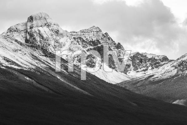 Jasper National Park, Alberta, Canada2017© 2017 Deede Denton - Image 24368_0385