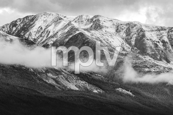 Jasper National Park, Alberta, Canada2017© 2017 Deede Denton - Image 24368_0386