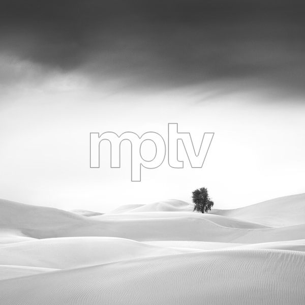 Desert in Transition (Serene - United Arab Emirates)2016© 2016 Anthony Lamb - Image 24375_0043