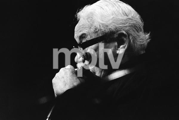 Toots Thielemans1989© 1989 Steve Banks - Image 24377_0233