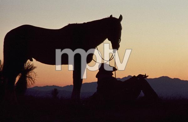 Steve McQueencirca 1970s** I.V. - Image 24383_0312
