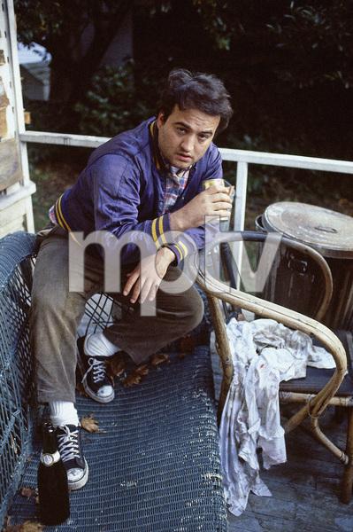 """John Belushi in """"Animal House"""" 1978** I.V. - Image 24383_0471"""