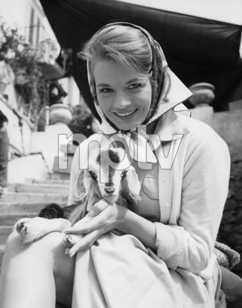 Angie Dickinsoncirca 1960s** B.D.M. - Image 24384_0071