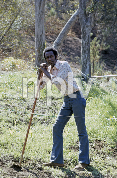 Cleavon Little1972 © 1978 Gene Trindl - Image 2504_0001