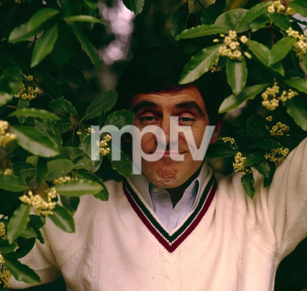 2749-9ANTHONY NEWLEY, 1966 © 1978 KEN WHITMOREMPTV - Image 2749_9