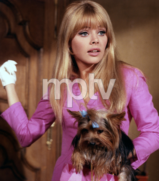 """The Bobo""Britt Ekland1967 Warner Bros.**I.V. - Image 3312_0102"