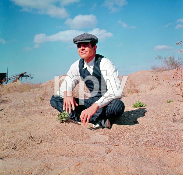 """""""Bonnie and Clyde""""Warren Beatty1967 Warner Bros. © 1978 David Sutton - Image 3314_0158"""