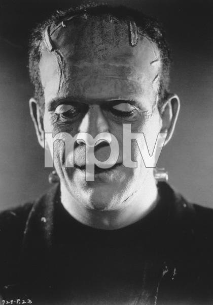 Bride Of Frankenstein, TheBoris Karloff (1935) Paramount - Image 3318_18