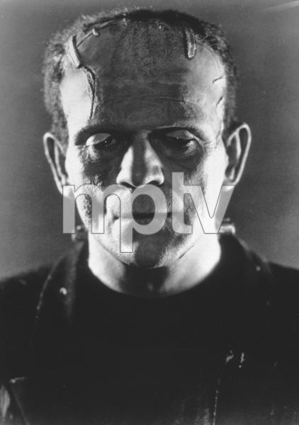 Bride Of Frankenstein, TheBoris Karloff (1935) Paramount - Image 3318_19