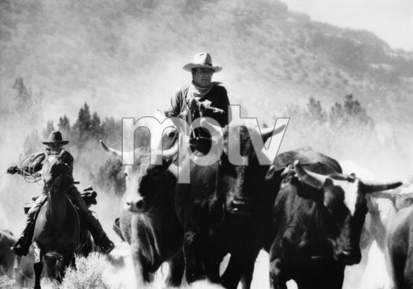 """The Cowboys""John Wayne1972© 1978 David Sutton - Image 3370_0012"