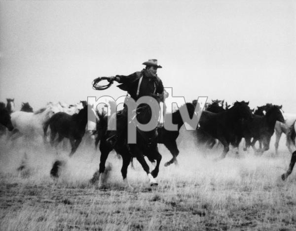 """The Cowboys""John Wayne1971 Warner Bros.© 1978 David Sutton - Image 3370_0014"