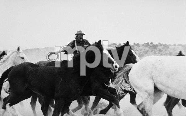 """The Cowboys,"" John WayneWarner Bros. 1971. © 1978 David Sutton - Image 3370_0588"