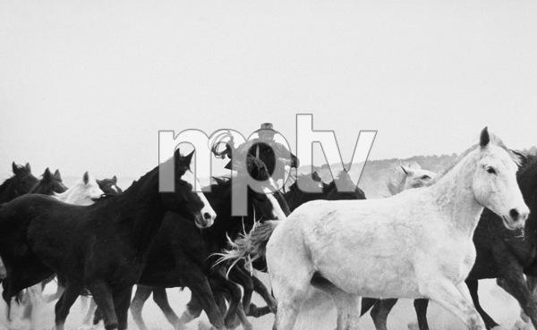 """The Cowboys,"" John WayneWarner Bros. 1971. © 1978 David Sutton - Image 3370_0589"