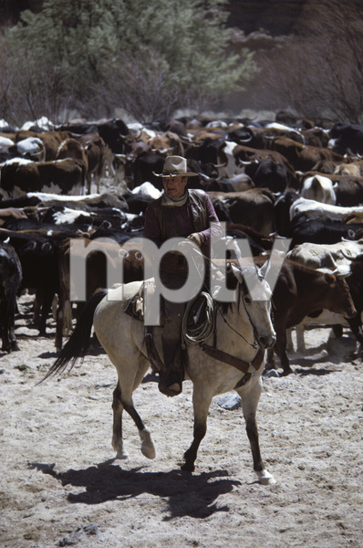 """The Cowboys""John Wayne1971© 1978 David Sutton - Image 3370_0612"
