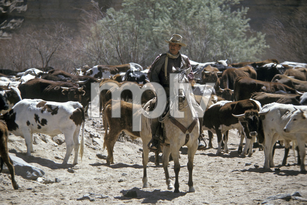 """The Cowboys""John Wayne1972 Warner Brothers © 1978 David Sutton - Image 3370_0687"