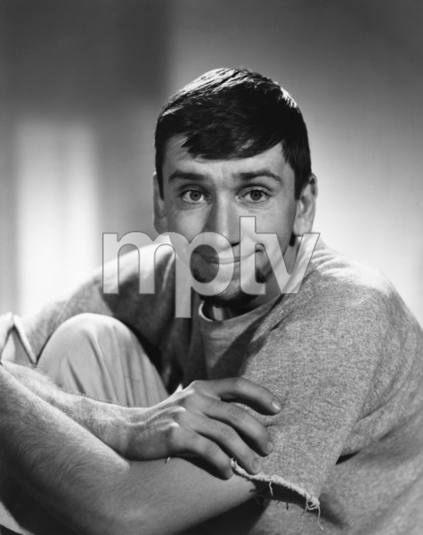 """The Many Loves of Dobie Gillis""Bob Denver1960Photo by Gabi Rona - Image 3397_0009"