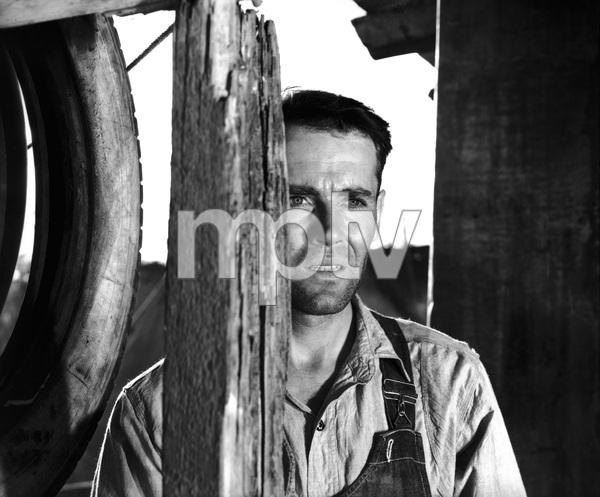 """The Grapes of Wrath""Henry Fonda1940 20th Century Fox** I.V. - Image 3463_0126"