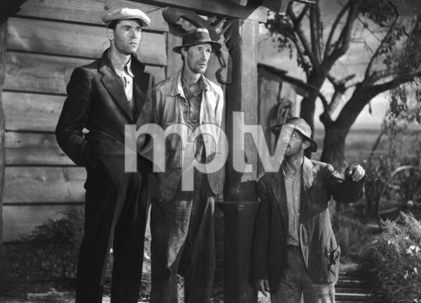 """The Grapes of Wrath""Henry Fonda, John Carradine, John Qualen1940 Twentieth Century Fox** I.V. - Image 3463_0138"