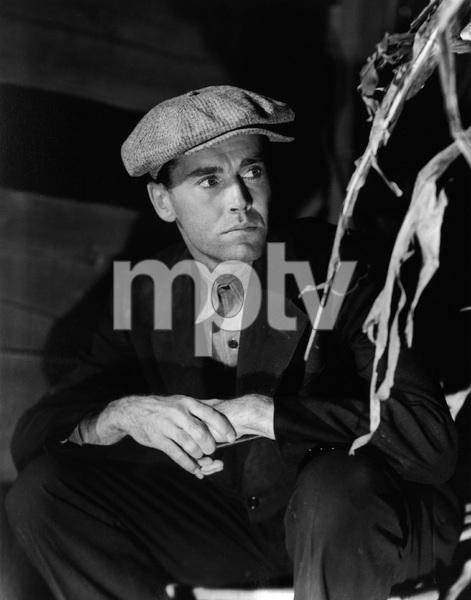 """The Grapes of Wrath""Henry Fonda1940 20th Century Fox** I.V. - Image 3463_0152"